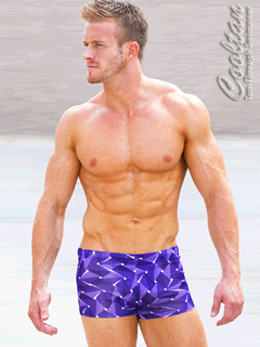 Amethyst Mens Swim Hipsters