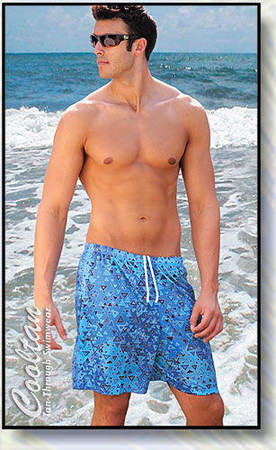 Blue Aztec Board Shorts